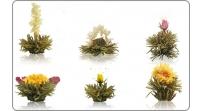Erblüh-Tee